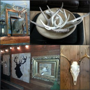antler Collage