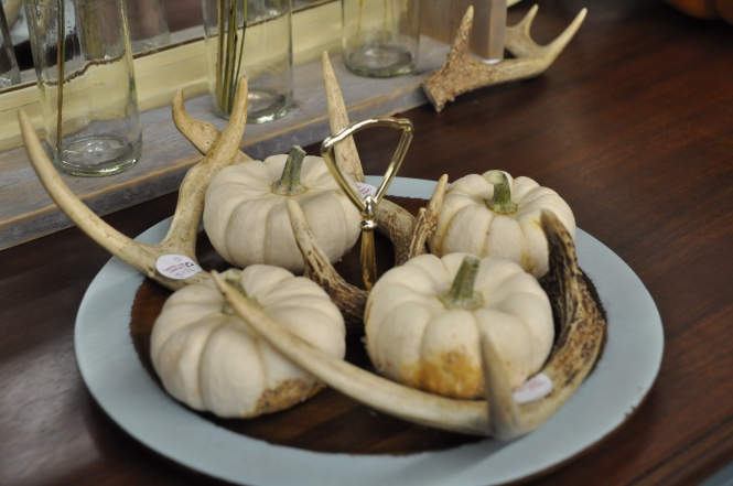 Fall Pumpkins and Deer Antlers at Carver Junk Company | Antlers are awesome dog chew toys - indestructible and natural